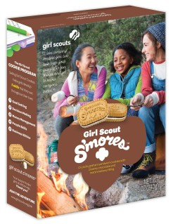 girl-scout-sandwich-smores1