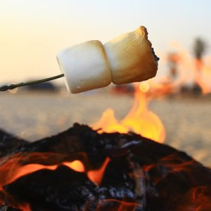 smores closeup at beach