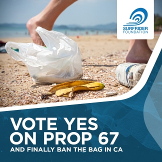surfrider-vote-yes