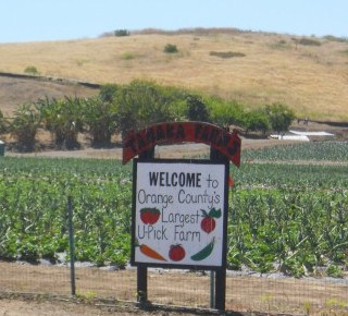 Tanaka-Farms field.sign