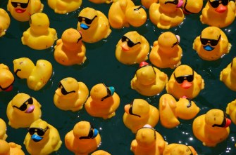Tubingen Germany rubber-ducks race