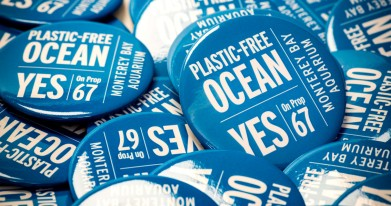 Pins supporting the ban of plastic bags and voting Yes on Prop 67.
