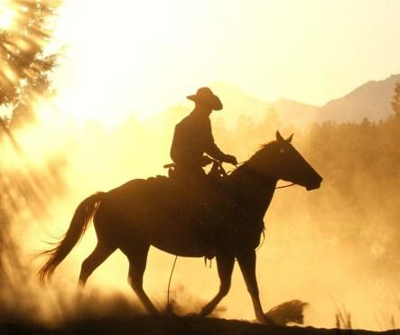 cowboy-in-sun