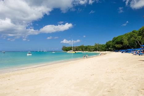 Dazzling beach Barbados