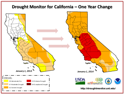 Drought-image-2