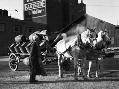 Eastside Brewery horses