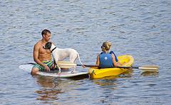 paddleboard and kayak
