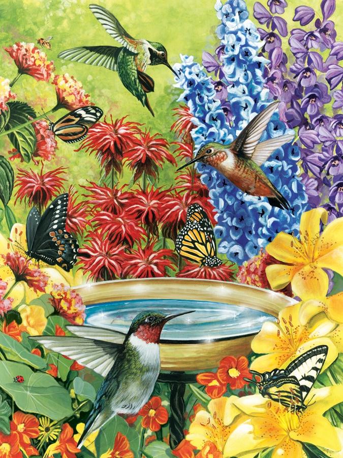 Butterflies And Hummingbirds In Your Garden Surf 39 N Beach Scene Magazine