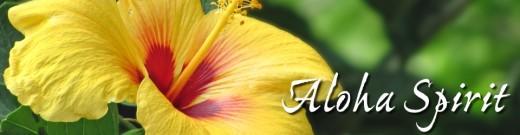 aloha spirit flower