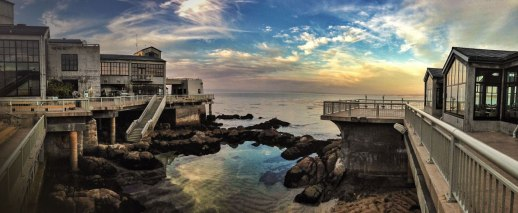 evening-at-the-monterey-bay-aquarium