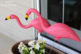 Plastic-pink-flamingos garden box