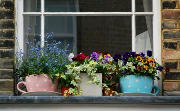 pots on ledge