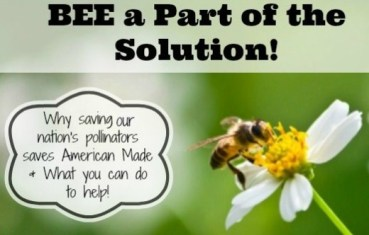 saving pollinators poster