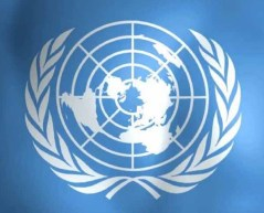 united-nations-report
