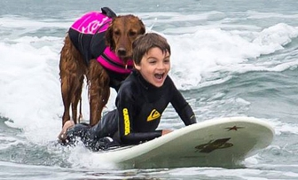 service-surf-dog and child