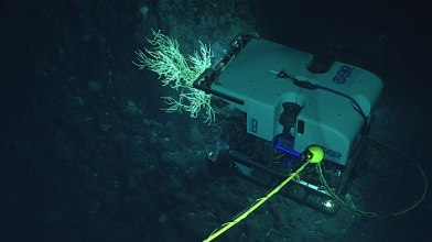deep-sea-rover