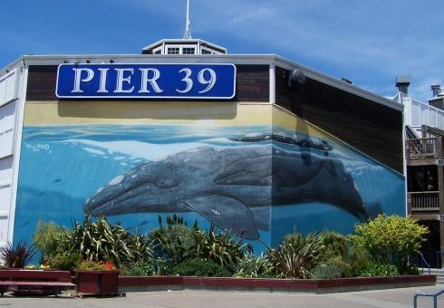 pier-39-sf-wall